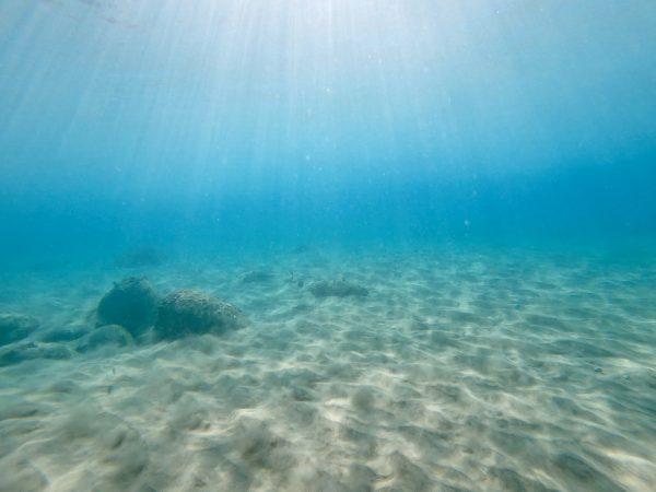 Plonger dans la mer des Caraïbes, l'une des choses à faire en Guadeloupe