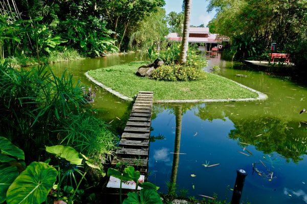 Sur les îles de Guadeloupe