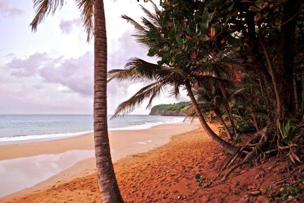 L'Anse du grand Bas Vent