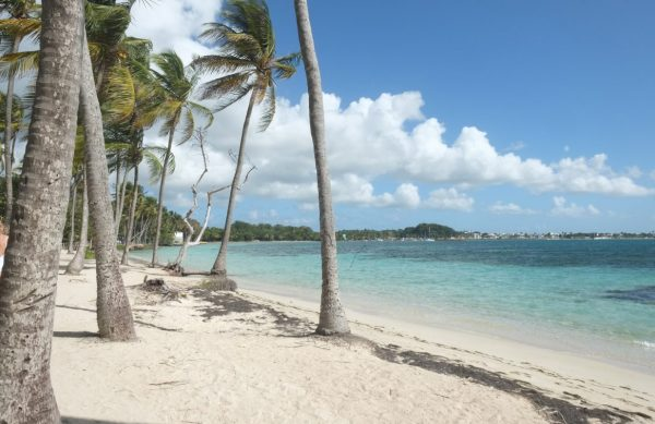 Une des plus belles plages de Guadeloupe