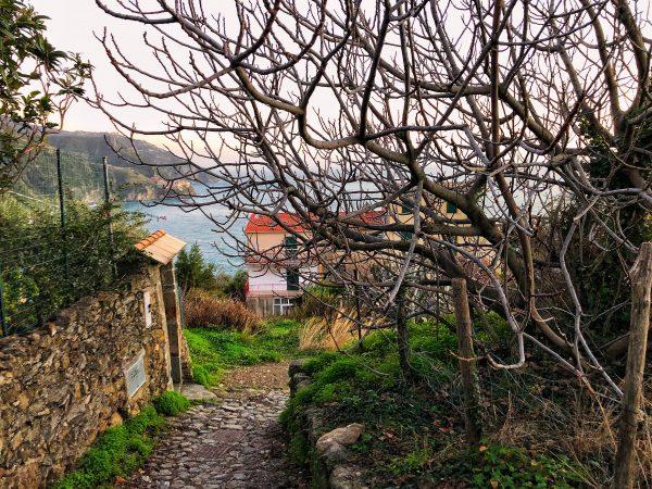 Les Cinque Terre en hiver