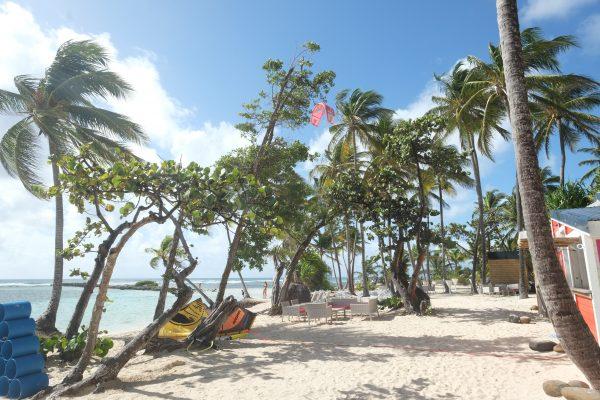 Sur la plage de la Caravelle en Guadeloupe