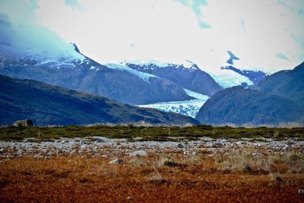 le glacier Marinelli en baie d'Ainsworth