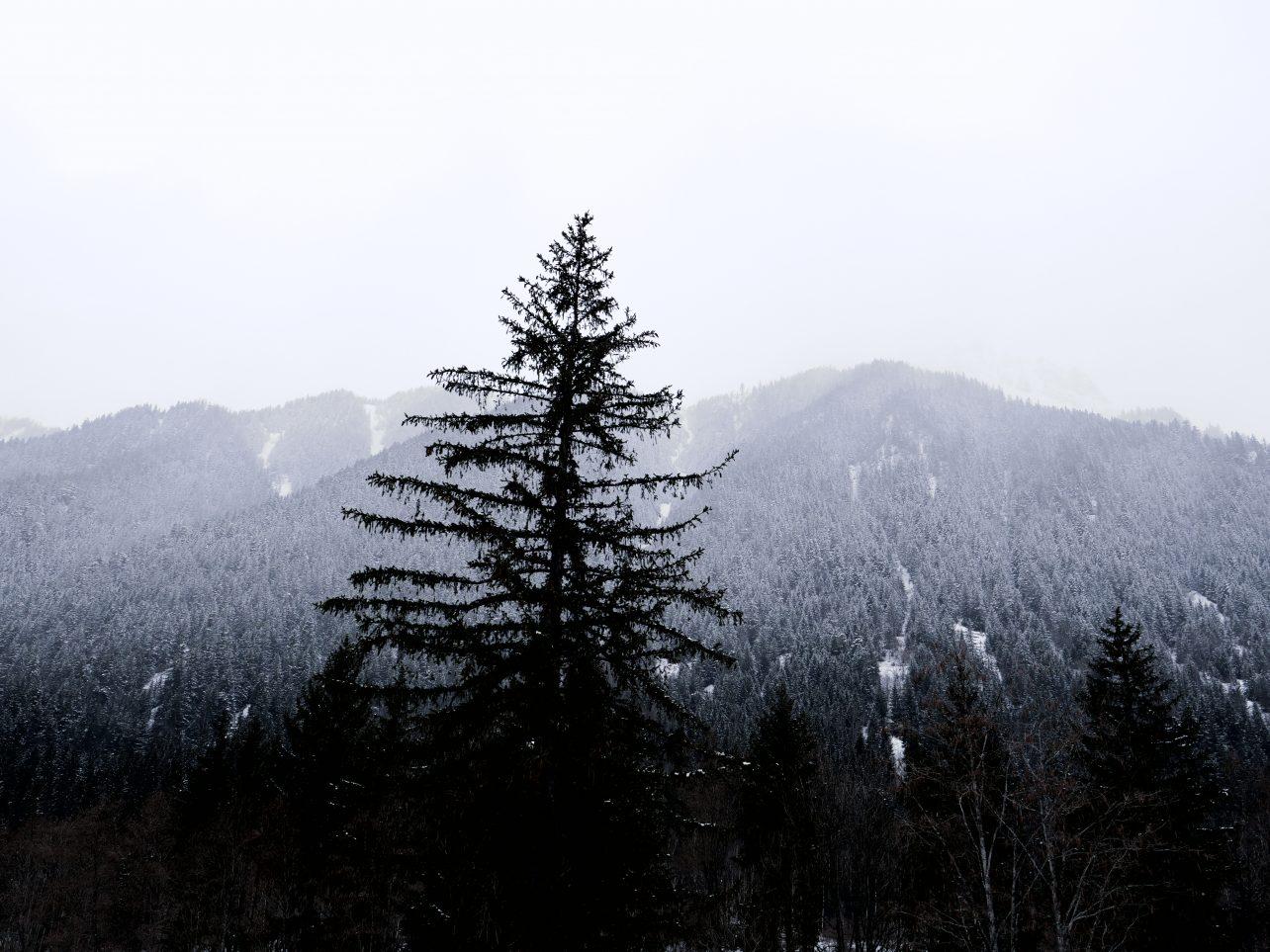 Dans la vallée de Chamonix