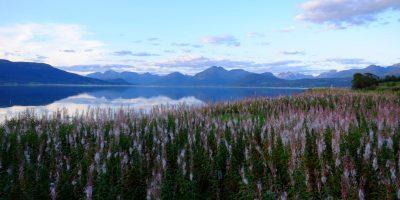 Un fjord dans le nord de la Norvège