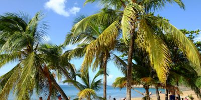 la plage de la Perle en Guadeloupe