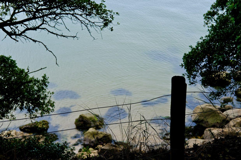 Se promener sur les chemins côtiers de Saint-Nazaire
