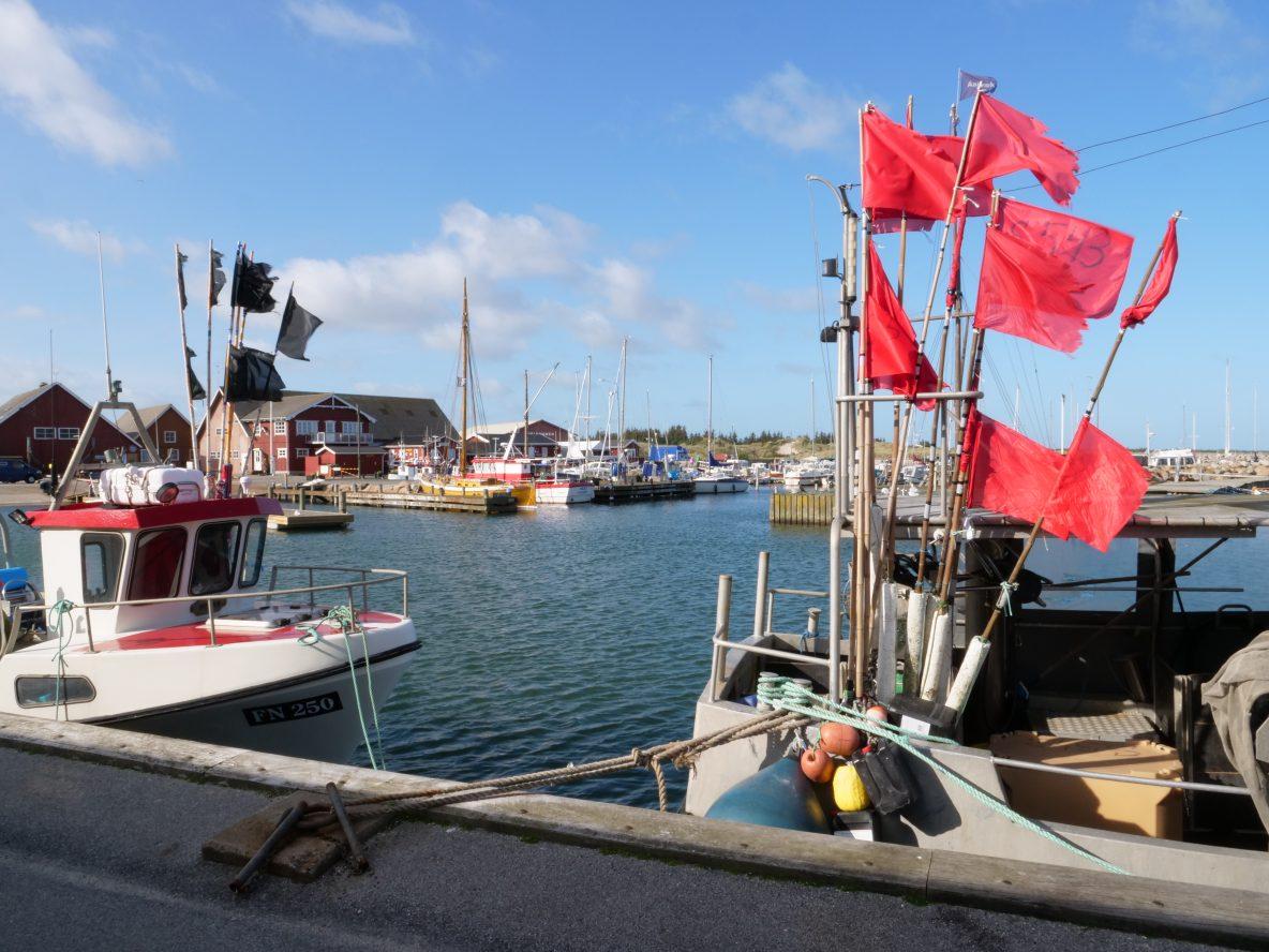 Albaek, un village danois