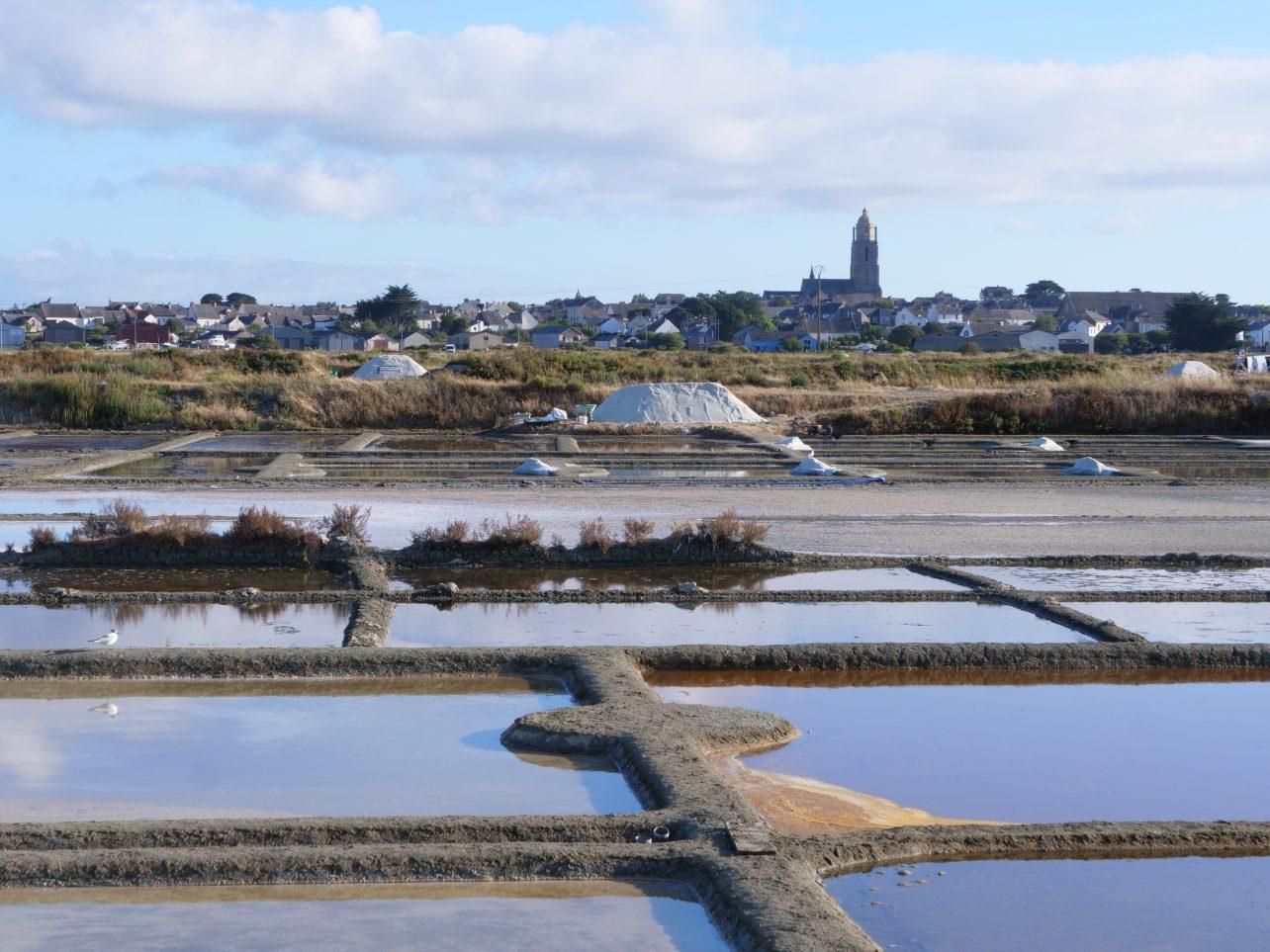 Les marais où s'évaporent l'eau de mer et où cristallise le sel.