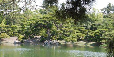 Balade dans un des jardins de Setouchi. photo: Sokha Keo