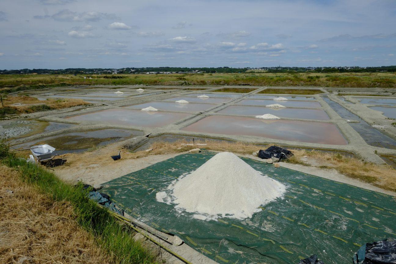 La récolte du sel de Guérande pendant les mois d'été