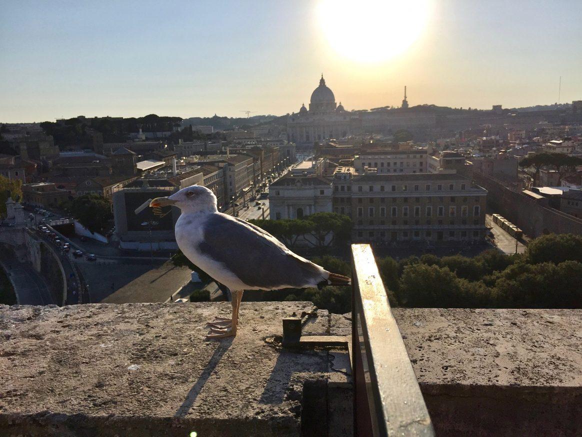 La vue depuis le château Saint-Ange, l'une des plus belles vues sur Rome