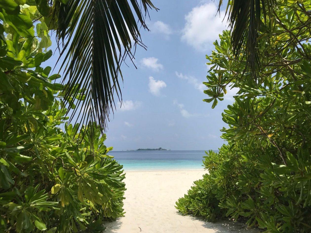 A la découverte des plus belles plages du monde