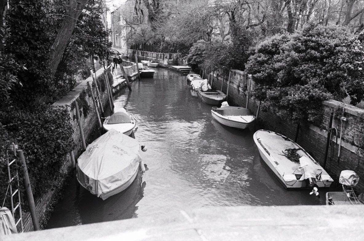 De rares arbres le long d'un petit canal du nord de Venise