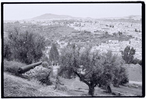 La belle ville de Fès dans le Moyen Atlas