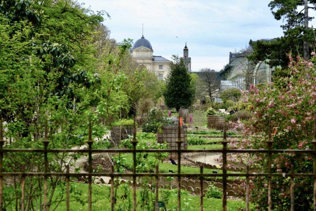Le Jardin des Plantes et le minaret de la Grande Mosquée de Paris