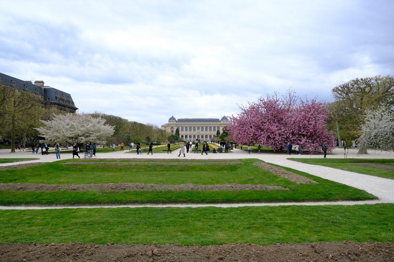 Le jardin des plantes, l'un des plus anciens jardins de Paris