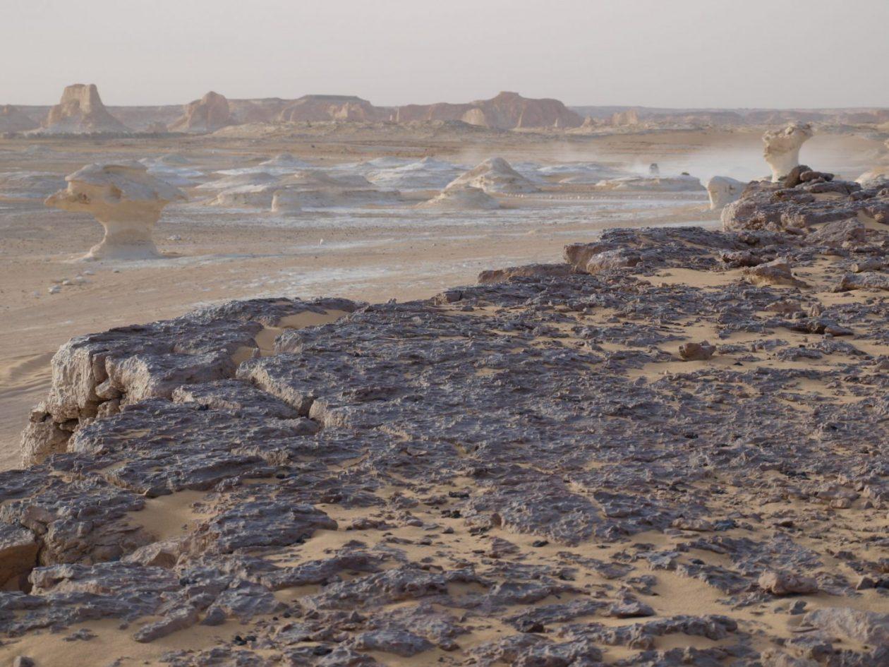 Dans le Bahara Siwa et le désert blanc égyptien