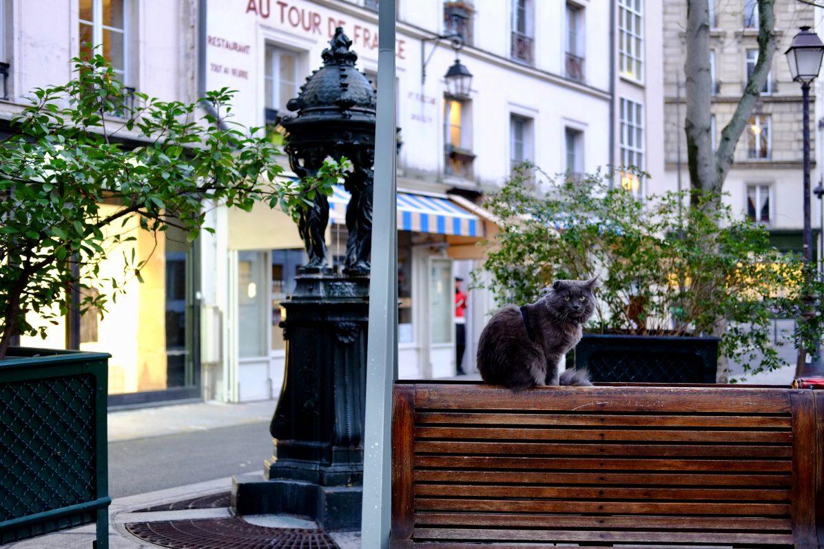 Dans les rues du 3 ème arrondissement