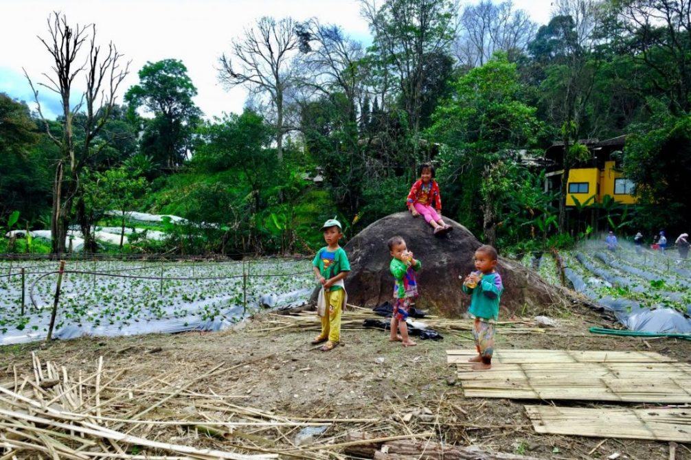 Des enfants jouant à proximité de leur parents à Doi Inthanon