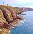 A la découverte des falaises du Cap Fréhel en Bretagne
