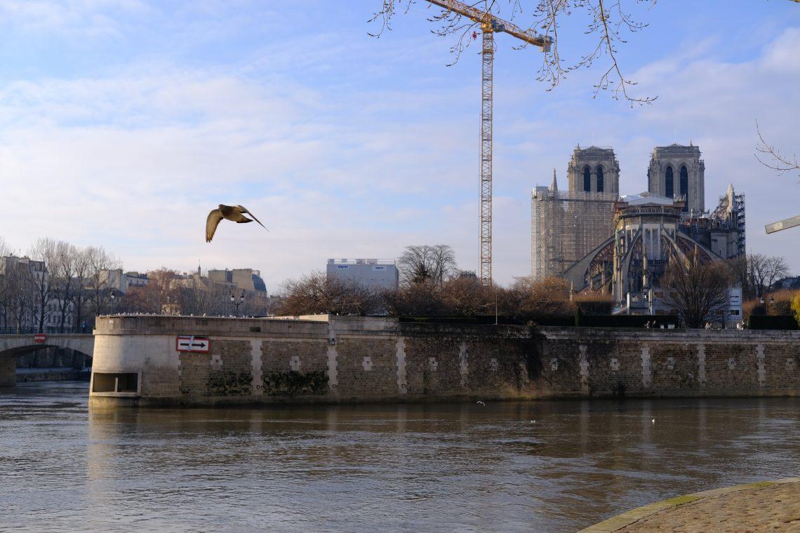 Notre Dame de Paris depuis les quais de Seine