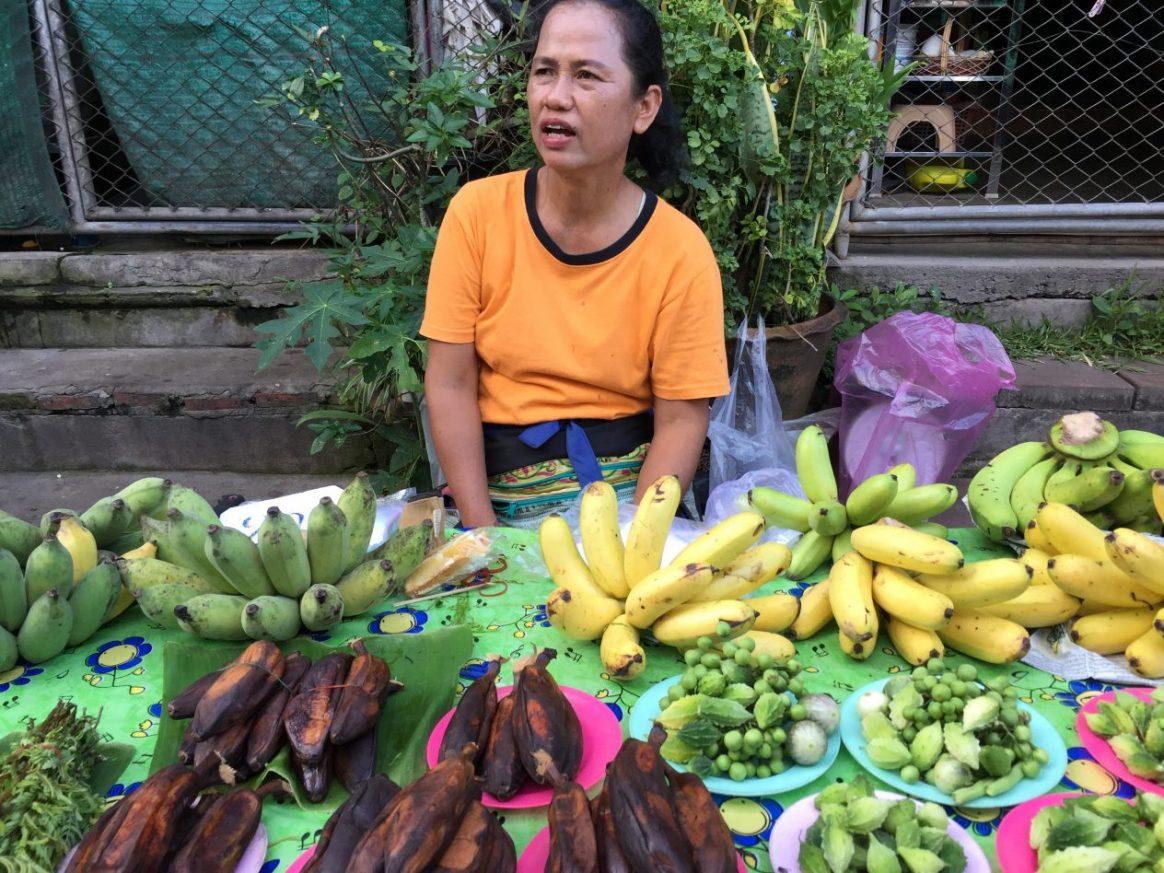 Sur les marchés du nord de la Thaïlande (Nan)