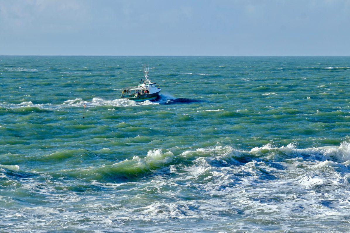 Un bateau de pêche venant poser ses casiers au plus près des côtes