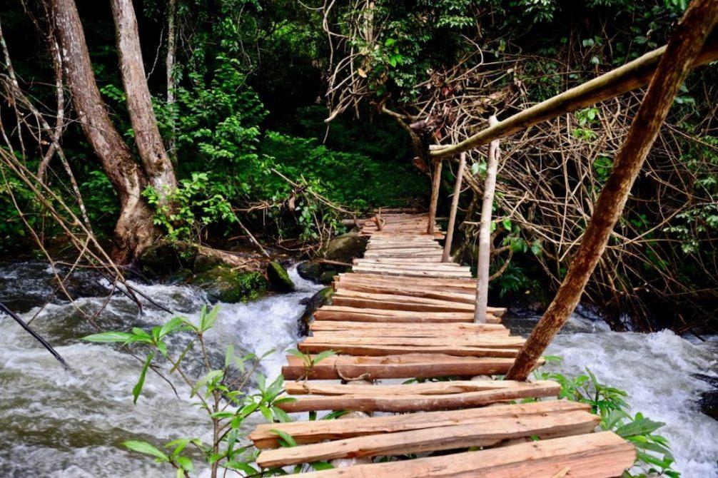 Un petit pont de bois permettant de relier les rizières à la forêt