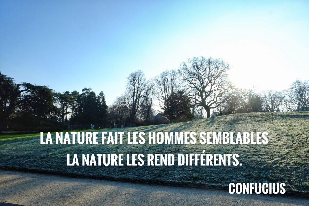 Une citation de Confucius sur la vie