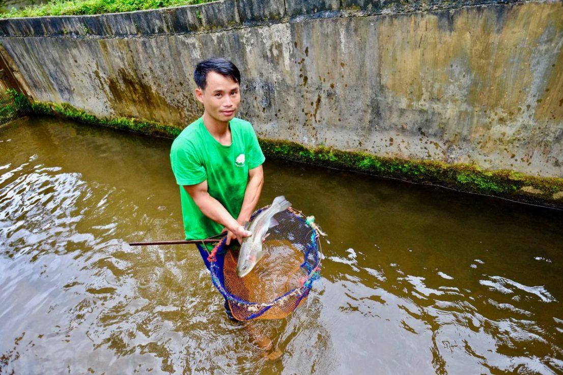 Une pisciculture dans le nord de la Thaïlande