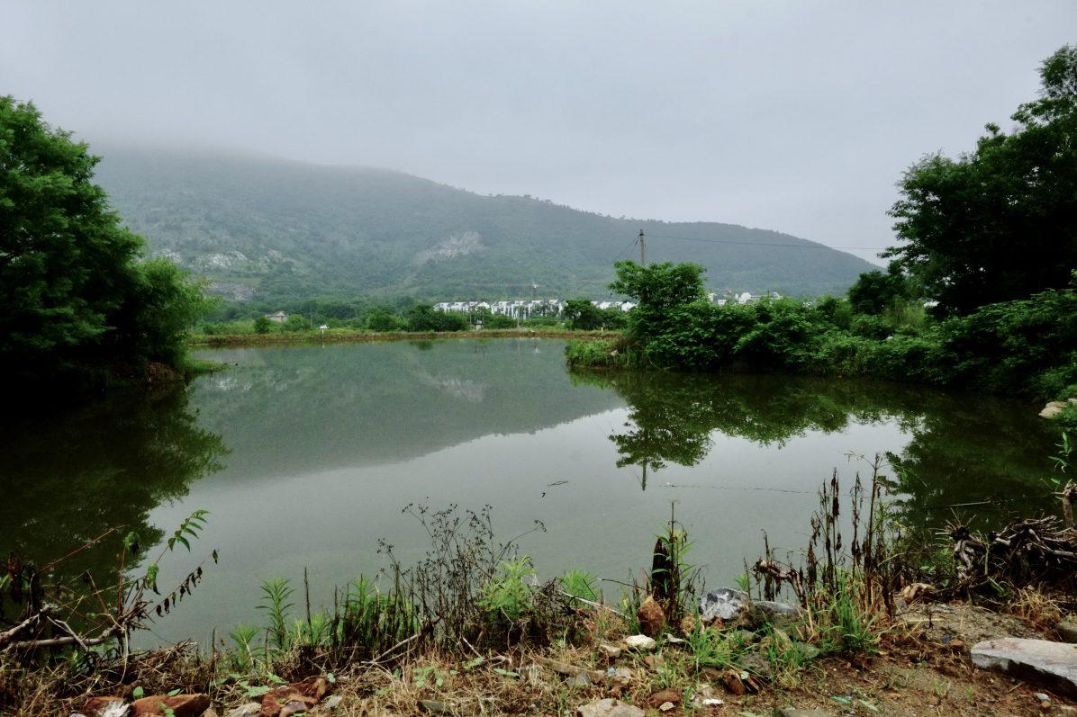 La nature au bout d'un petit chemin de l'Anhui
