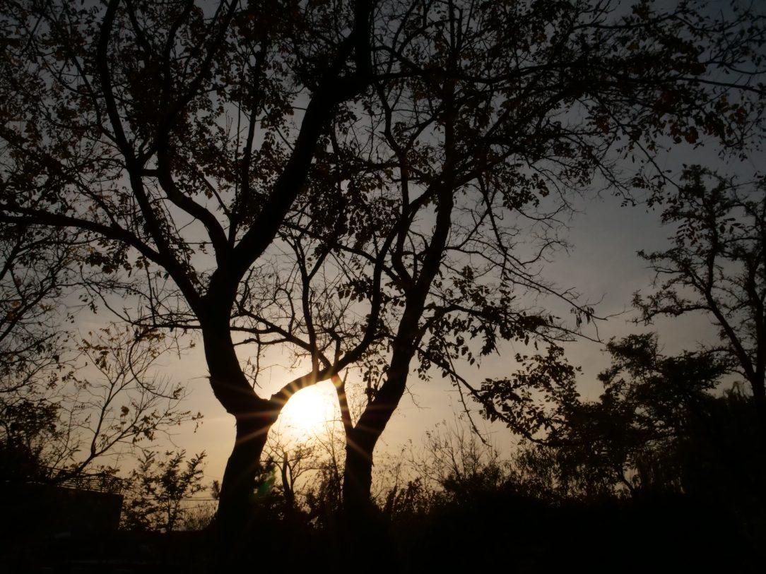 Le coucher du soleil à Songzhuang