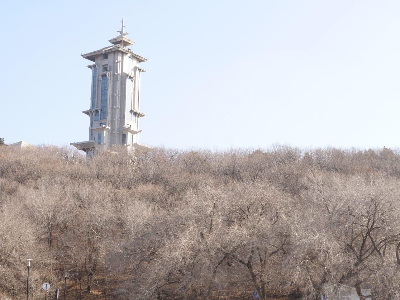 Une forêt glacée dans la campagne autour de Changchun