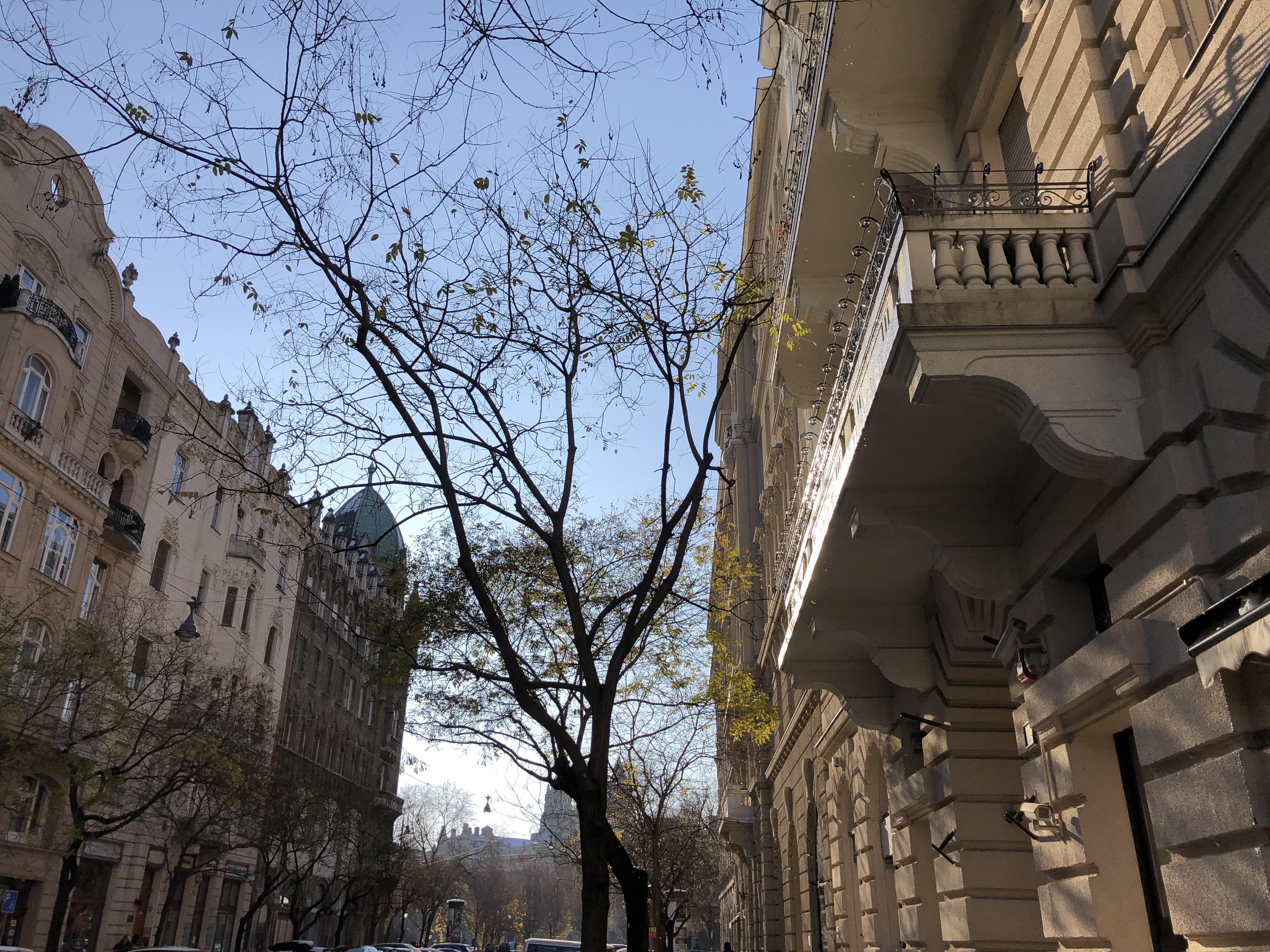 La belle lumière d'hiver sur les façades d'un quartier de Pest