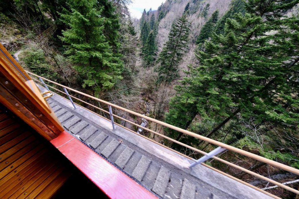 La vue du train du Mont Rigi
