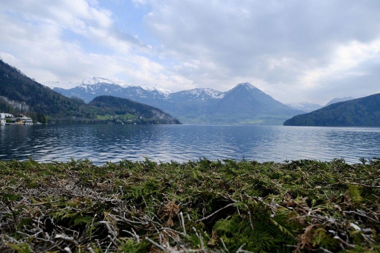 Le lac de Lucerne depuis Vitznau au printemps