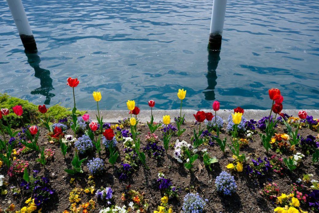 Le printemps à Gersau