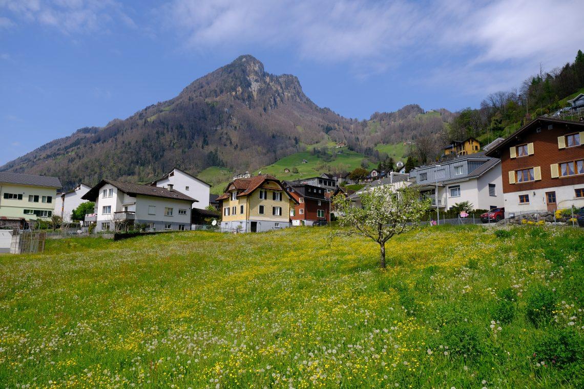 Un paysage bucolique surtout au début du printemps, Gersau, Suisse