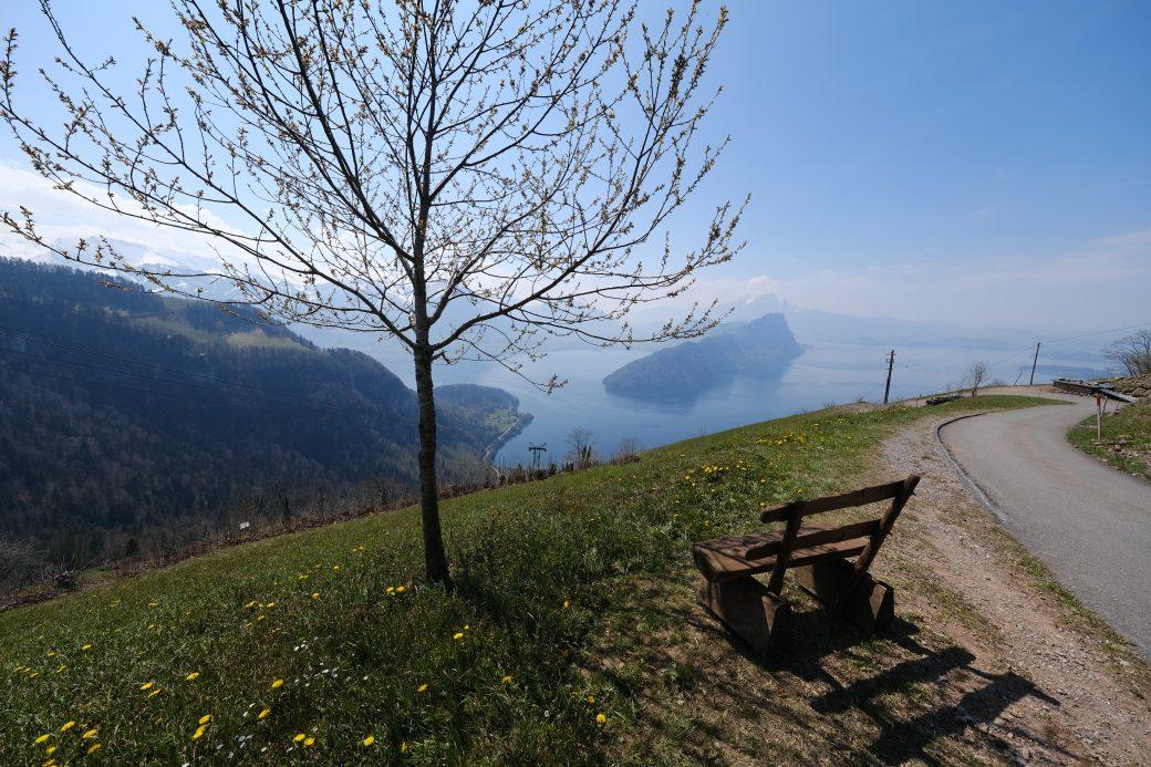 Une vue imprenable depuis les montagnes sur le lac de Lucerne
