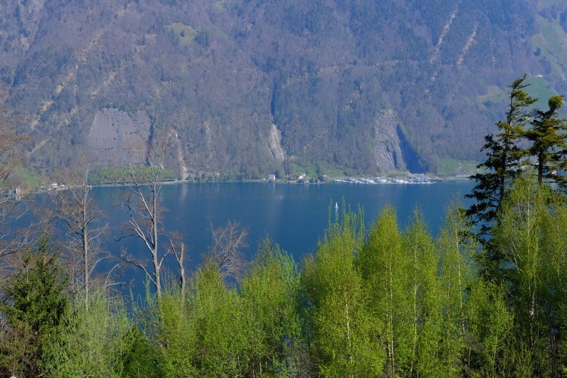 Une vue sur le lac des Quatre Cantons à Seelisberg
