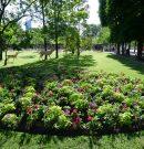 Le jardin du Luxembourg, le plus beau parc de Paris