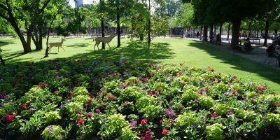 Les jolis jardins d'un espace vert parisien en été