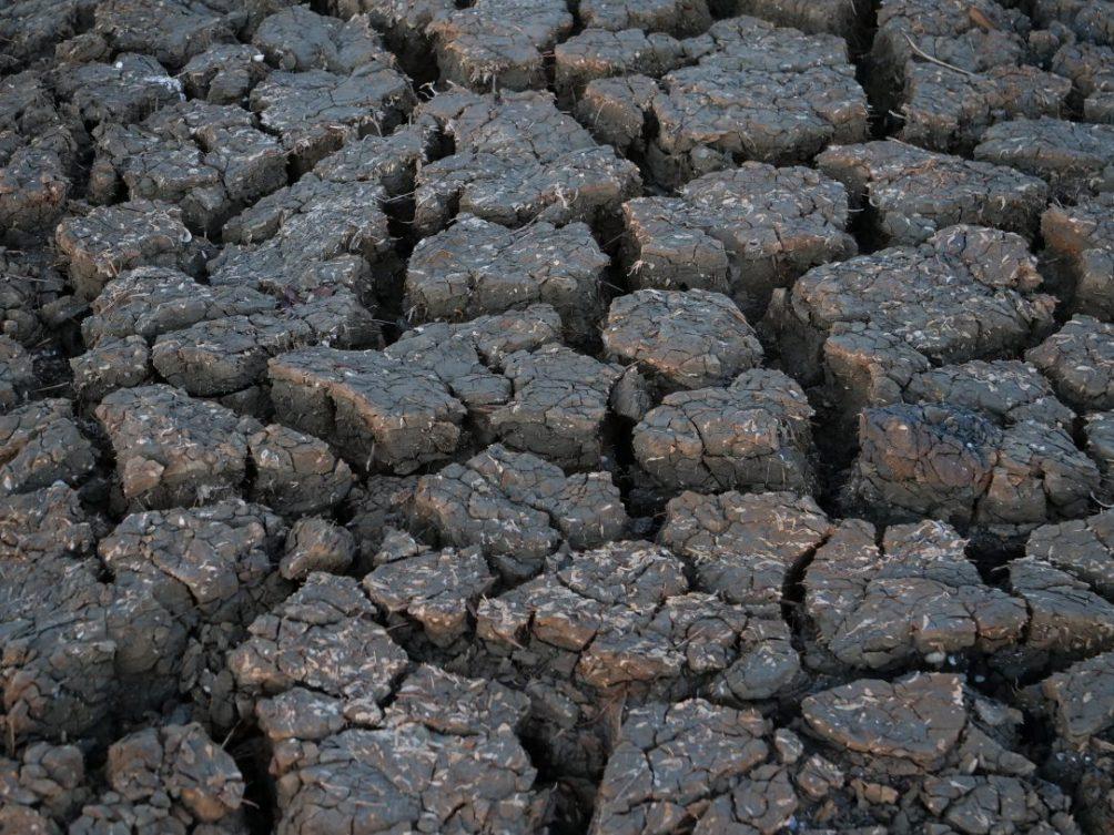 Ici on travaille la terre depuis des milliers d'années
