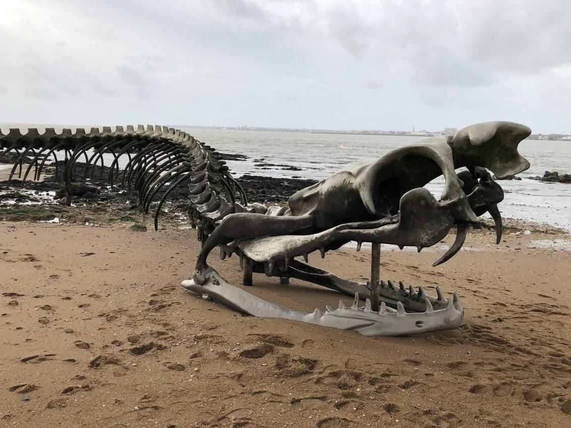 Le Serpent d'Océan à marée basse