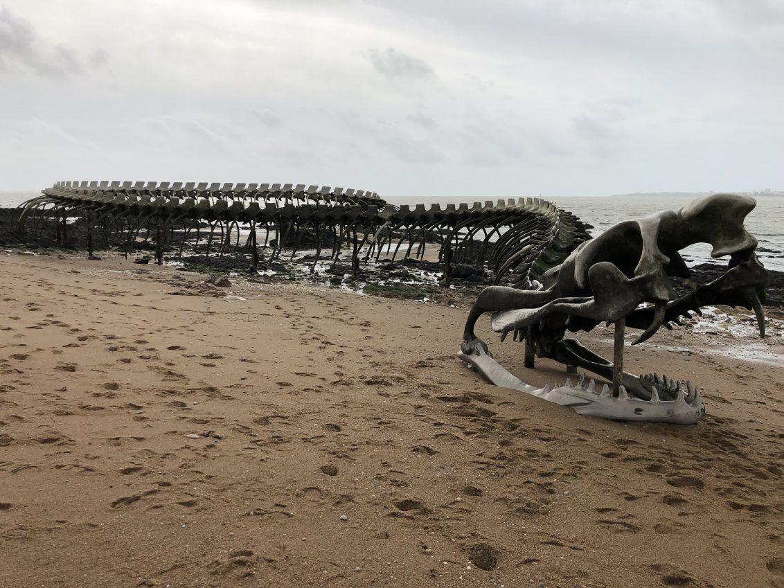 Le fameux serpent d'Océan de Saint-Brévin
