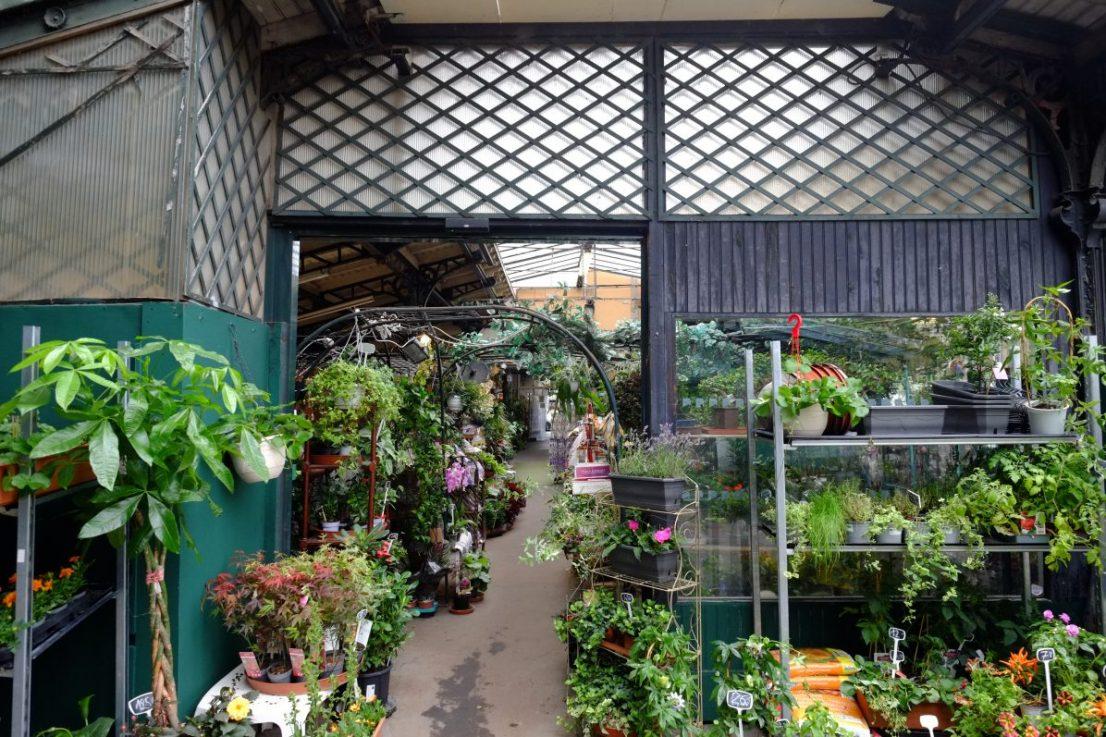 L'une des halles du marché aux fleurs de l'île de la Cité