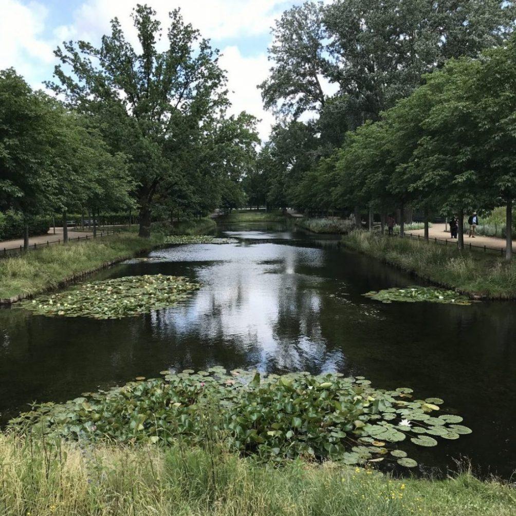 Prendre un grand bol d'air à Tiergarten