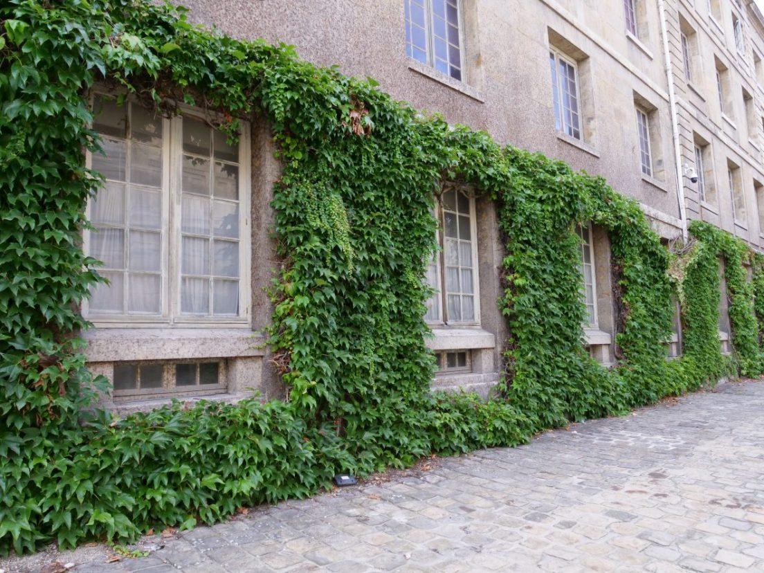 Les murs de la deuxième cour de l'Institut
