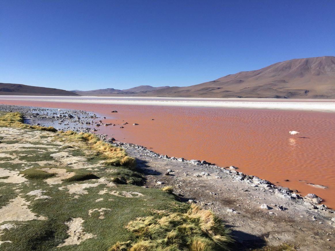 Les eaux rougeâtres de la Laguna Colorada